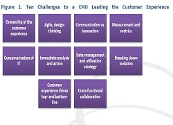 The Data-Driven CMO